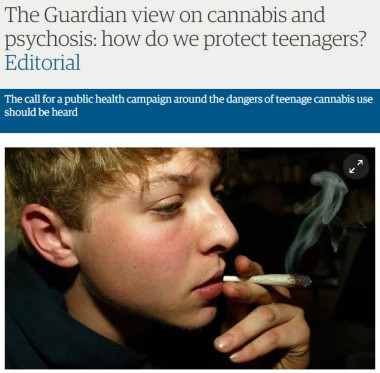 guardian cannabis psychosis headline pic