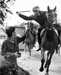 Orgreave 1984