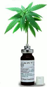 sativex-with-cannabis-leaf